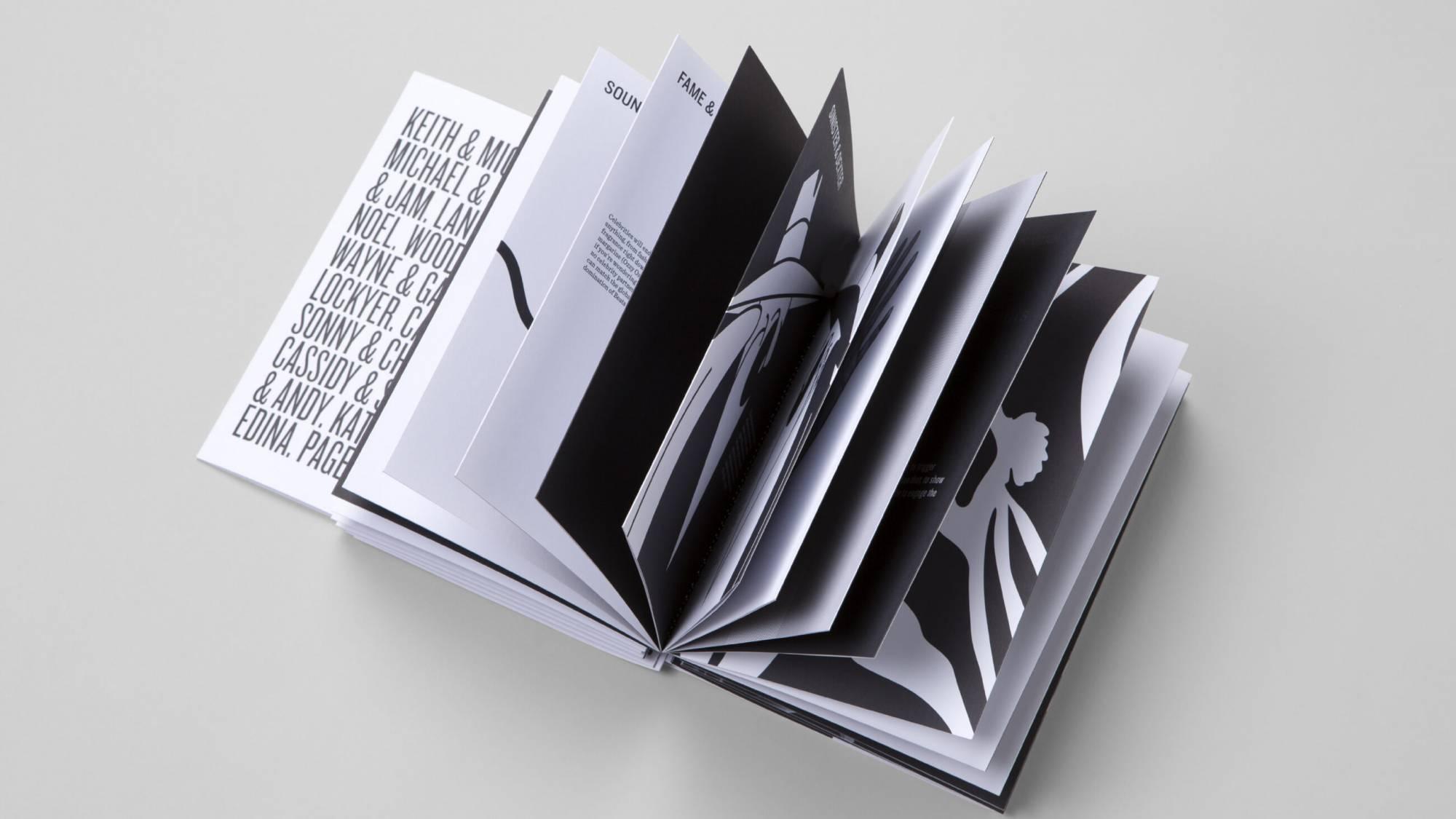 DAIS - Ten Year Project (2010 - 2019) Photo internal spreads of book